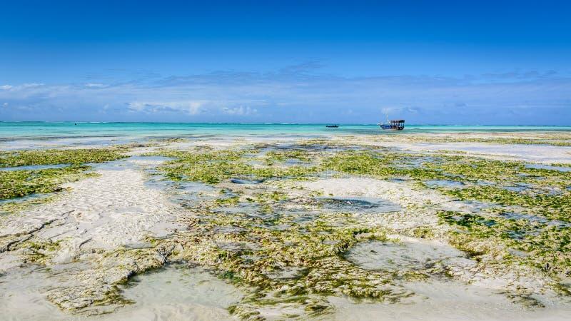 Playa Nungwi de Zanzíbar imagenes de archivo