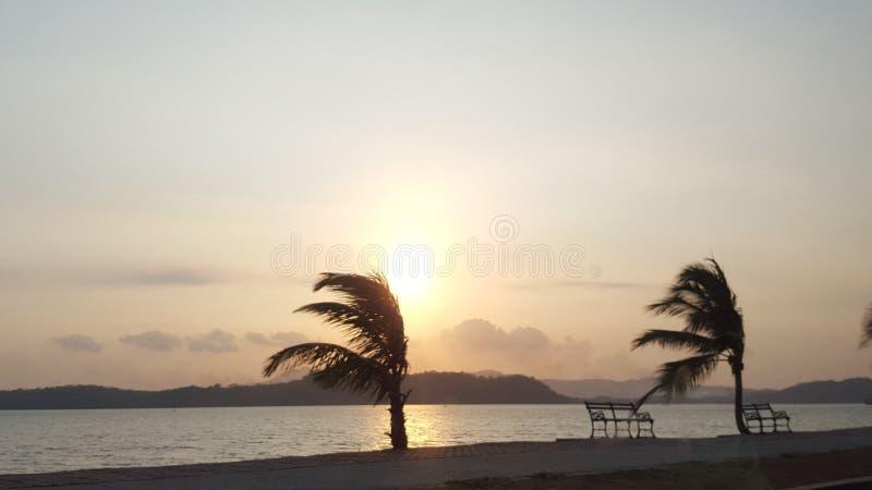 Playa, palmas, mar, puesta del sol fotografía de archivo libre de regalías