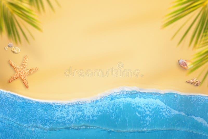 Playa plana de la endecha con las olas oceánicas, las palmas, las cáscaras y las estrellas de mar stock de ilustración