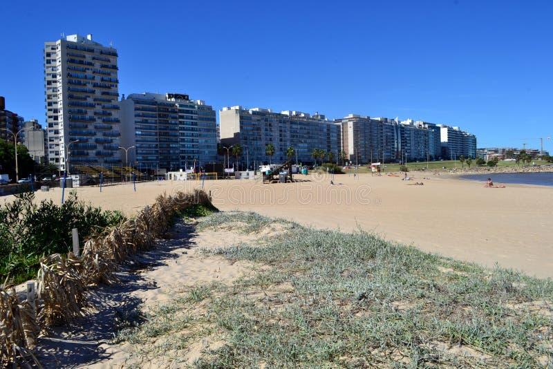 Playa pocitos,蒙得维的亚 免版税库存照片