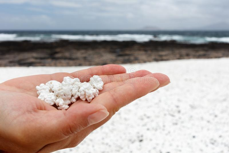 Playa popcorn, Fuerteventura. Playa popcorn,popcorn beach, Fuerteventura royalty free stock photos