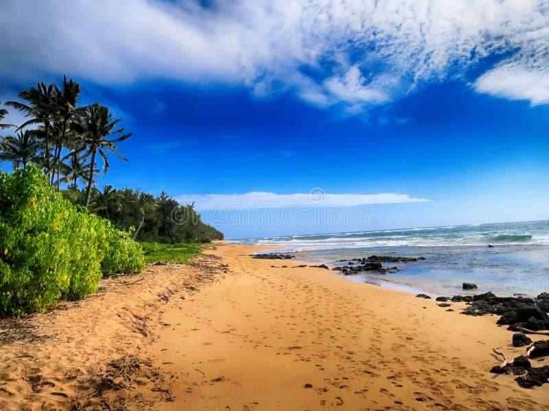 Playa Sandy en Kauai imagen de archivo libre de regalías