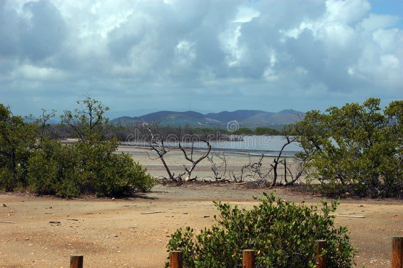 Playa Sucia op de westkust van Puerto Rico stock afbeeldingen