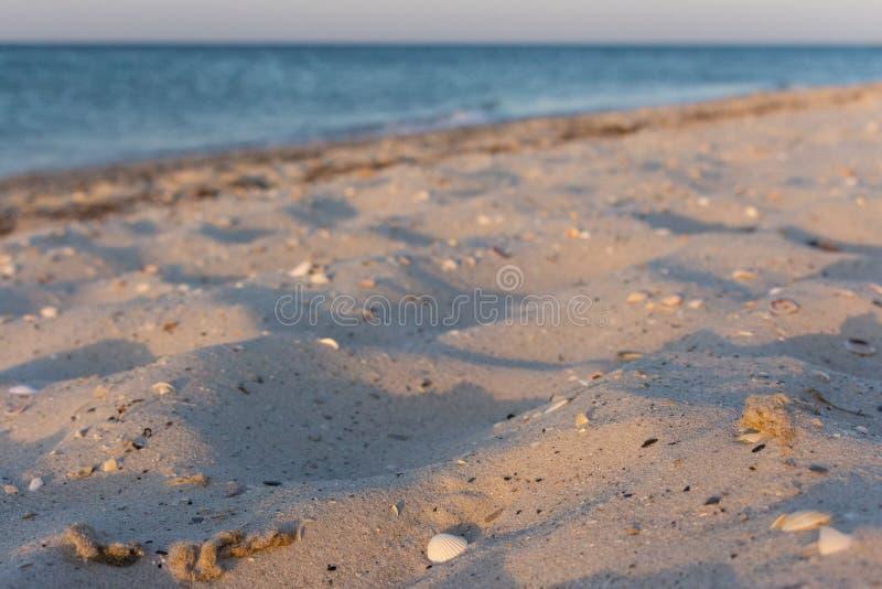 Playa tranquila en la luz de la mañana Costa costa vacía Concepto tropical del viaje Costa en la salida del sol imagen de archivo