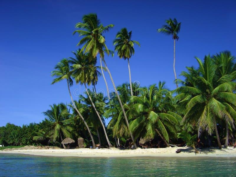 Download Playa tropical foto de archivo. Imagen de perfección, bahía - 1293682
