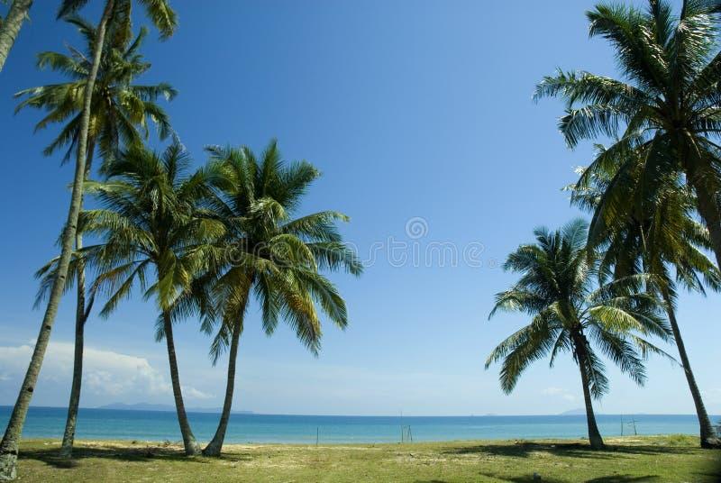 Playa tropical asoleada foto de archivo libre de regalías