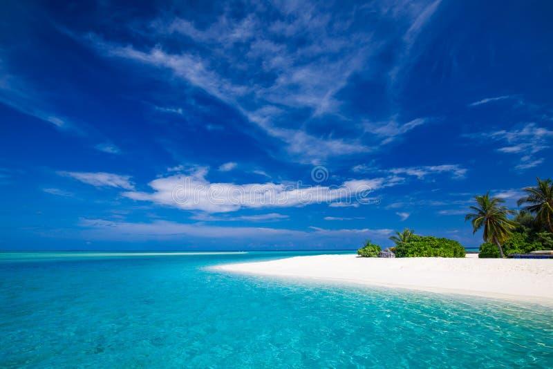 Playa tropical blanca en Maldivas con pocas palmeras y la laguna