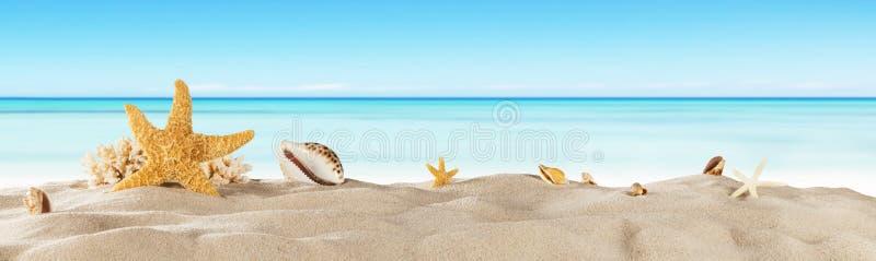 Playa tropical con la estrella de mar en la arena, fondo de las vacaciones de verano