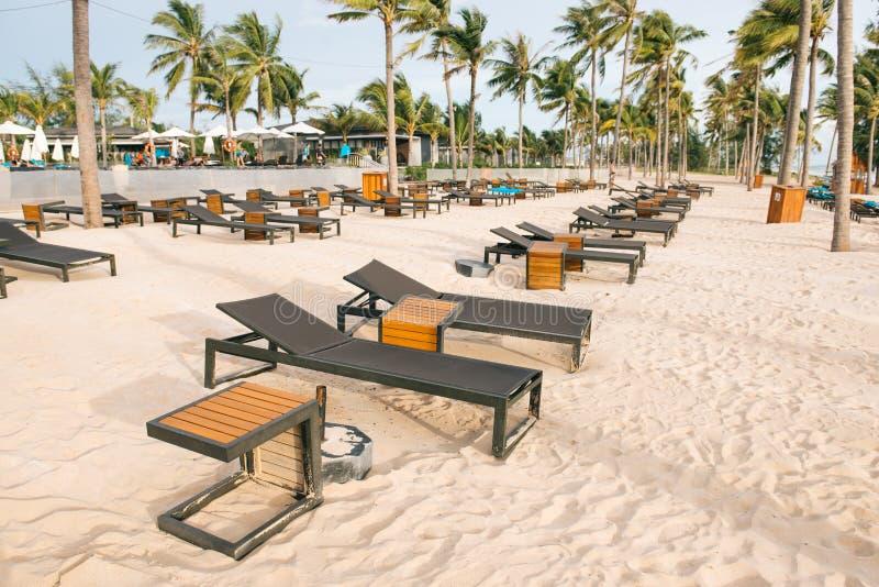Playa tropical con las palmeras, el cielo azul y la arena blanca imágenes de archivo libres de regalías
