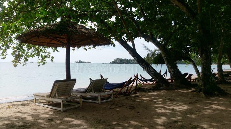 Playa tropical con las sillas perezosas debajo de árboles imágenes de archivo libres de regalías