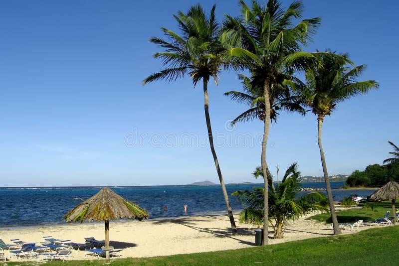 Playa tropical de la isla imagen de archivo libre de regalías