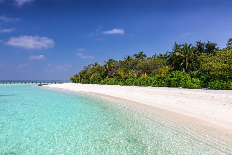 Playa tropical del paraíso en los Maldivas fotos de archivo