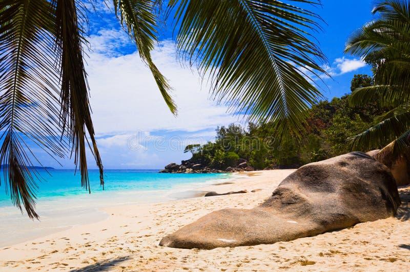 Playa tropical en la isla Praslin, Seychelles imagen de archivo libre de regalías