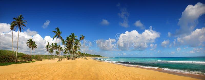 Playa tropical en Punta Cana, panorámico imagen de archivo libre de regalías