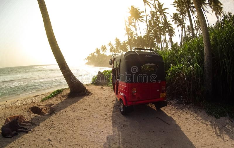 Playa tropical en Sri Lanka fotos de archivo