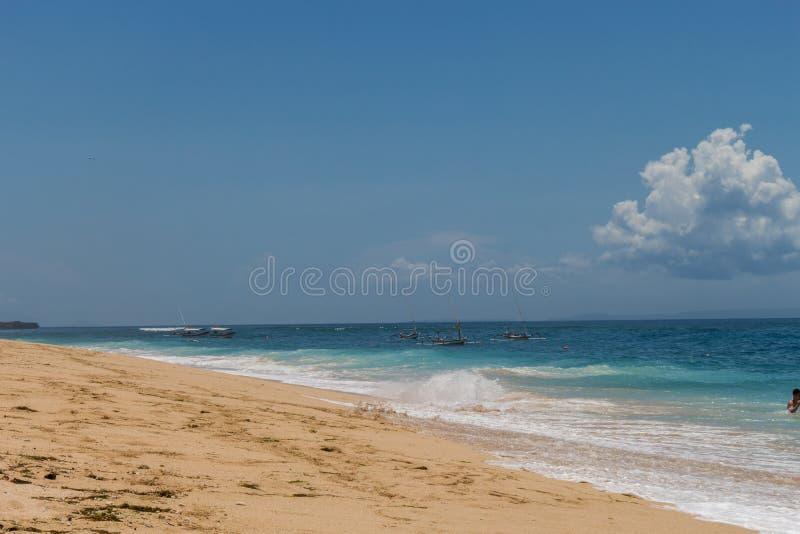 Download Playa Tropical Hermosa Con La Vegetación Enorme Foto de archivo - Imagen de colorido, hermoso: 41908334