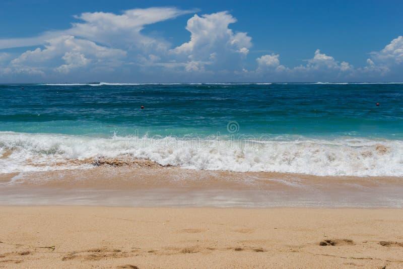 Download Playa Tropical Hermosa Con La Vegetación Enorme Foto de archivo - Imagen de bahía, litoral: 41908430