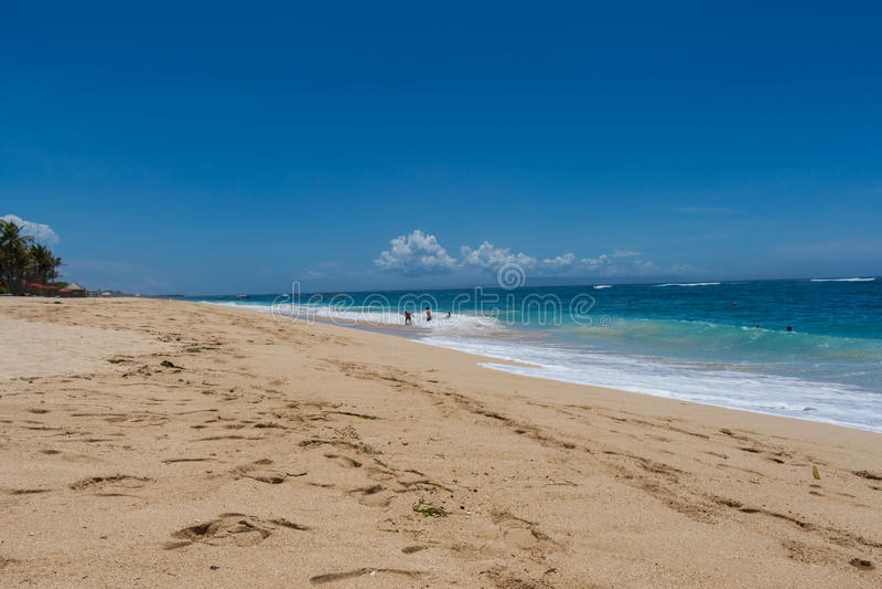 Download Playa Tropical Hermosa Con La Vegetación Enorme Foto de archivo - Imagen de holiday, ambiente: 41908470