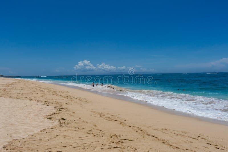 Download Playa Tropical Hermosa Con La Vegetación Enorme Imagen de archivo - Imagen de paisaje, color: 41908571