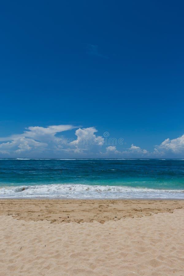 Download Playa Tropical Hermosa Con La Vegetación Enorme Foto de archivo - Imagen de hermoso, arena: 41908624