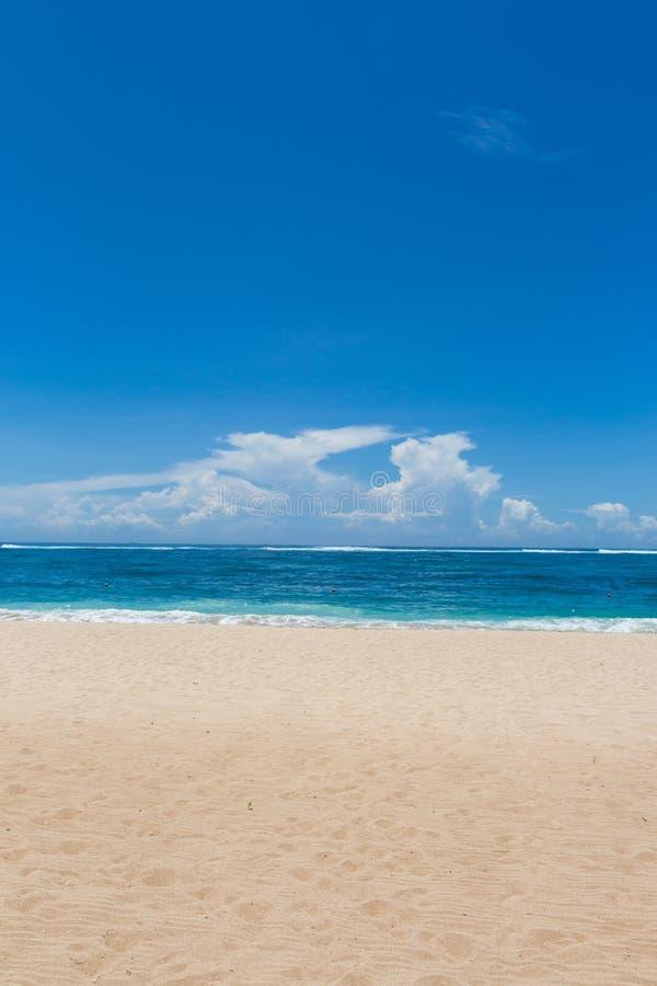 Download Playa Tropical Hermosa Con La Vegetación Enorme Foto de archivo - Imagen de océano, color: 41908698