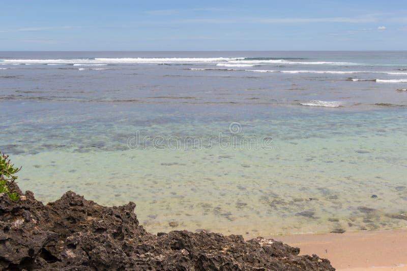 Download Playa Tropical Hermosa Con La Vegetación Enorme Imagen de archivo - Imagen de costa, soledad: 41913339