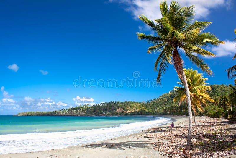 Playa tropical hermosa en Baracoa, Cuba imagenes de archivo
