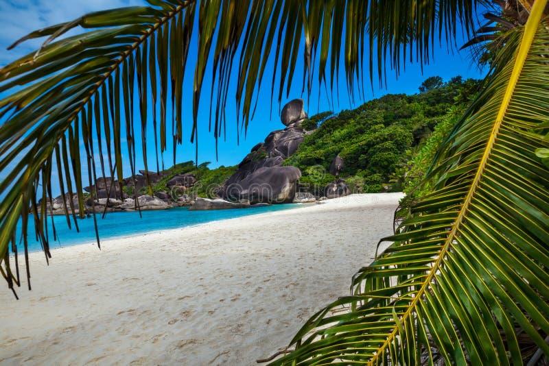 Playa tropical, islas de Similan, mar de Andaman, Tailandia travelings imagen de archivo