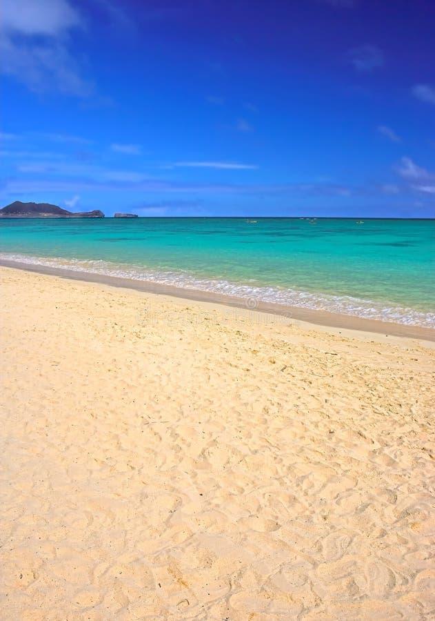 Playa tropical - playa del bramido, Hawaii foto de archivo