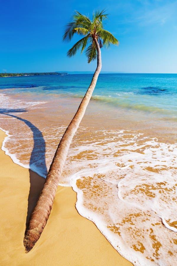 Playa tropical, Tailandia imagen de archivo libre de regalías