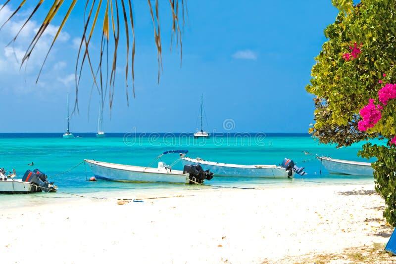 Playa tropical, Venezuela imagen de archivo libre de regalías