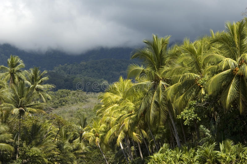 Playa Ventanas in Costa Rica. royalty free stock photo