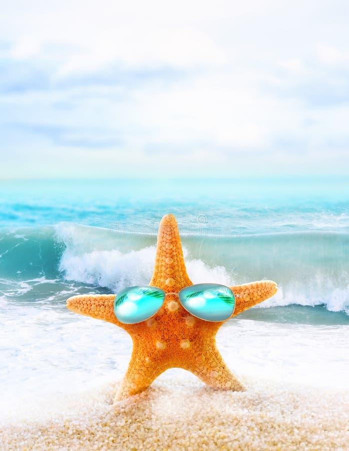 Playa Verano Estrellas de mar en gafas de sol en la costa imágenes de archivo libres de regalías
