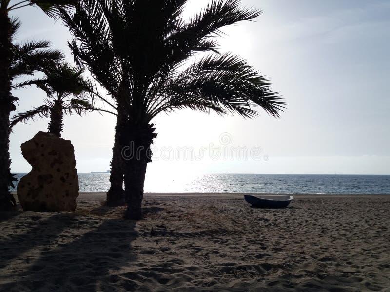 Playa y palmas fotografía de archivo libre de regalías