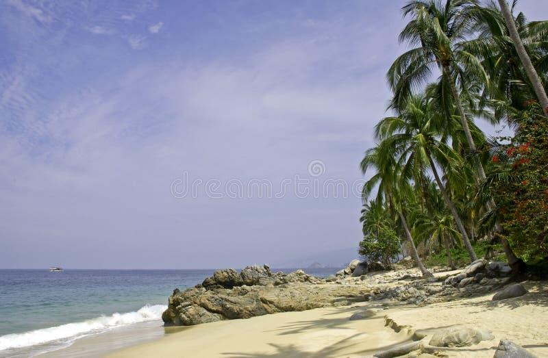 Playa y palmeras del Océano Pacífico imagen de archivo libre de regalías