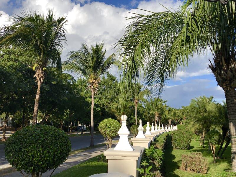 Playacar地区在墨西哥 免版税库存图片