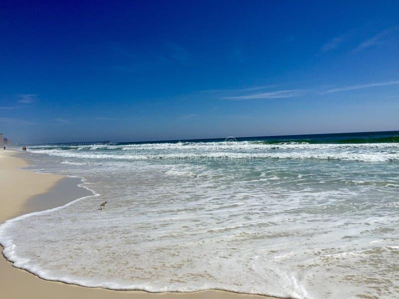Playas de la Costa del Golfo foto de archivo libre de regalías