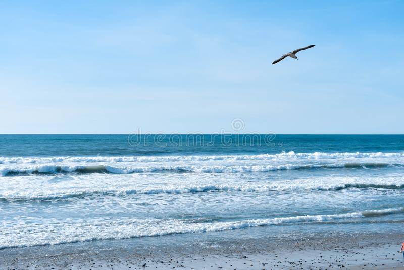 Playas de Tijuana royalty free stock photo