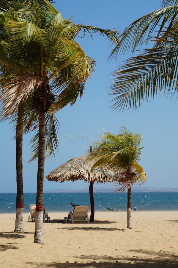Playas del Caribe foto de archivo libre de regalías
