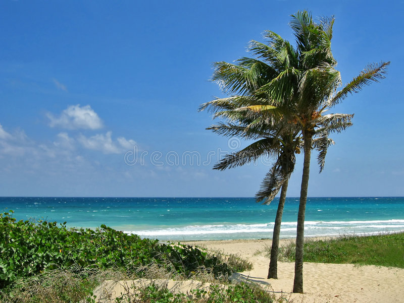 Playas Del Este lizenzfreies stockbild