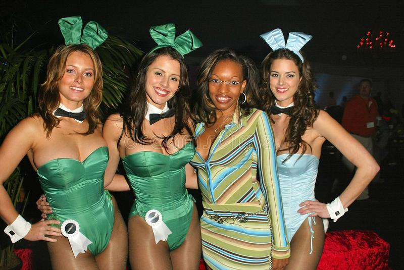 Playboy Bunnies royalty free stock images