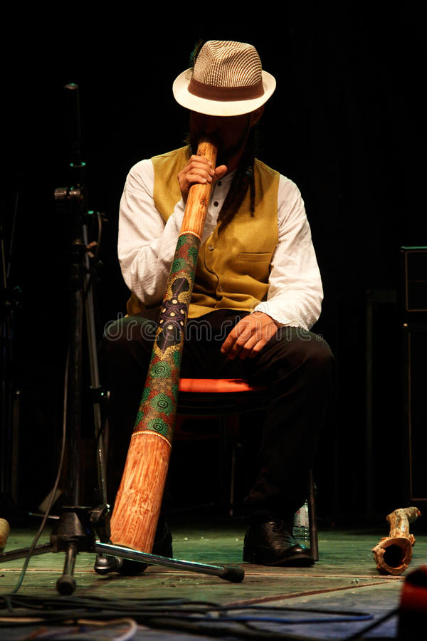 Player on the Didgeridoo royalty free stock images