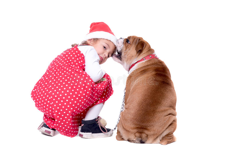 Playful dog and kid. Palyful little kid in Christmas wear and her pet,isolated on white background stock photo
