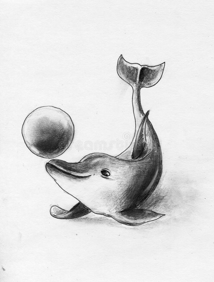 Download Playful dolphin stock illustration. Image of pencil, drawing - 17142957