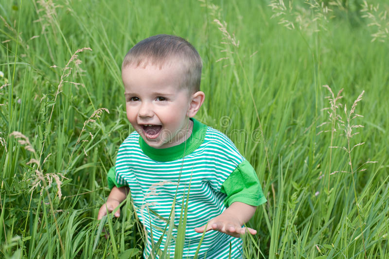 Download Playful Little Boy In The Grass Stock Photo - Image of glance, laughing: 14895634