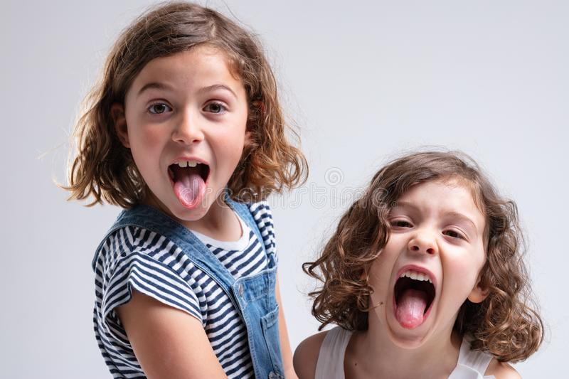 Playful little girls sticking out their tongues. At the camera as they stand stand by side on a white background stock photography