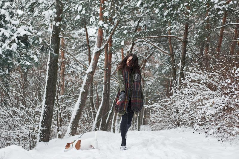 Playful mood. Woman in warm clothes walks the dog in the snowy forest. Front view royalty free stock images