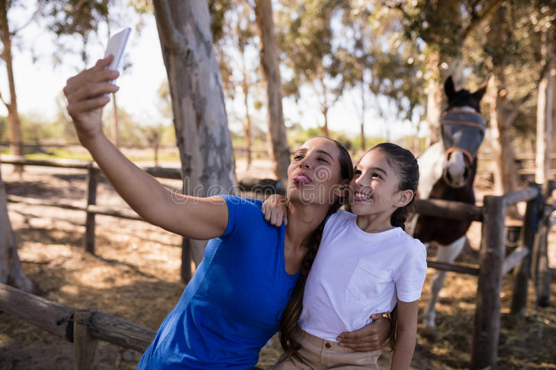 Playful siblings taking selfie. While standing at paddock stock images
