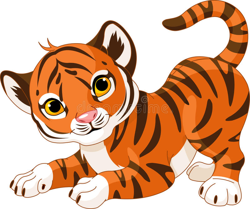 Playful tiger cub stock illustration
