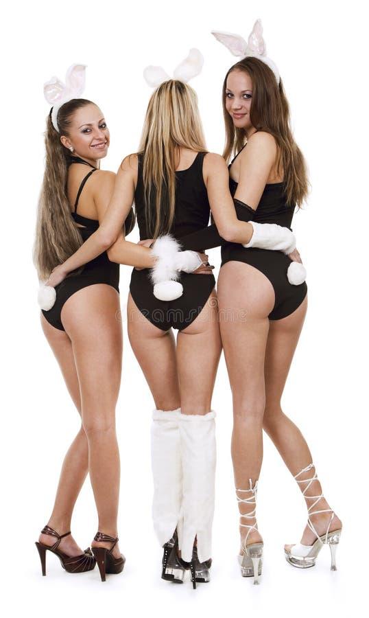 Playgirls atractivos en traje del conejito imágenes de archivo libres de regalías